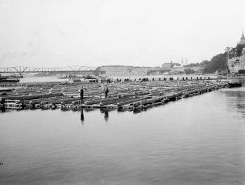 J.R. Booth's timber raft, Topley Studio, Library and Archives Canada, 138219. With the completed Alexandra bridge in the background, this picture dates from no earlier than 1901. Quite possibly, it is a photograph of the last timber raft to go from Ottawa to Quebec City in 1908.